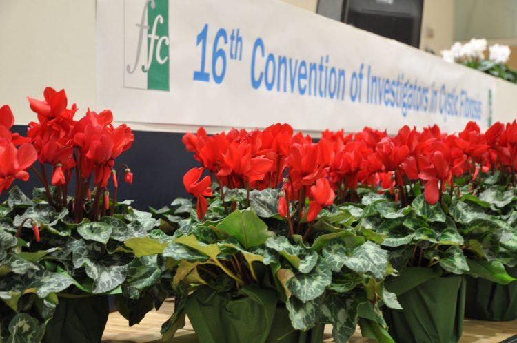 XVI Convention dei ricercatori FFC: progressi della ricerca e orizzonti di cura