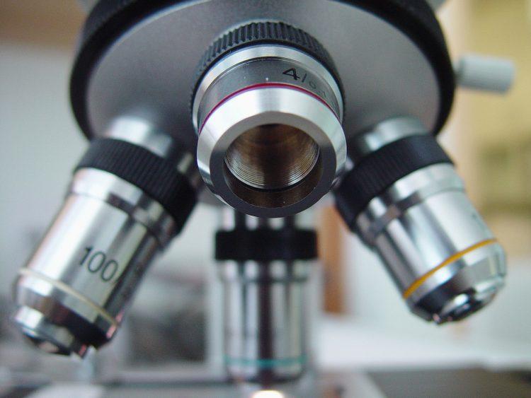 Riunito il Comitato Scientifico FFC per selezionare i progetti di ricerca